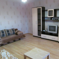 Екатеринбург — 1-комн. квартира, 45 м² – Ломоносова  59 (45 м²) — Фото 12