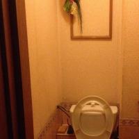 Челябинск — 1-комн. квартира, 40 м² – Проспект Победы, 321 (40 м²) — Фото 2