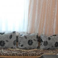 Челябинск — 1-комн. квартира, 30 м² – Бейвеля, 46а (30 м²) — Фото 3