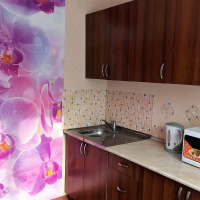 Барнаул — 1-комн. квартира, 40 м² – Балтийская, 13 (40 м²) — Фото 5