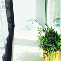 Барнаул — 1-комн. квартира, 39 м² – Советская, 6к1 (39 м²) — Фото 5