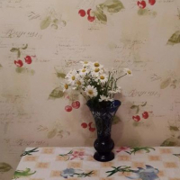 Владивосток — 1-комн. квартира, 36 м² – Чкалова, 20 (36 м²) — Фото 5