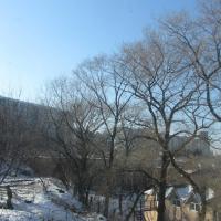 Владивосток — 2-комн. квартира, 44 м² – Интернациональная, 71 (44 м²) — Фото 5