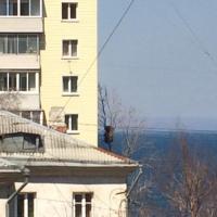 Владивосток — 1-комн. квартира, 35 м² – Верхнепортовая, 44 (35 м²) — Фото 2