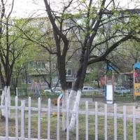 Владивосток — 1-комн. квартира, 23 м² – Народный проспект, 43/1 (23 м²) — Фото 3