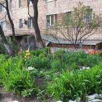 Владивосток — 1-комн. квартира, 23 м² – Народный проспект, 43/1 (23 м²) — Фото 4