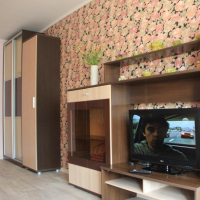 Владивосток — 1-комн. квартира, 38 м² – Октябрьская, 14 (38 м²) — Фото 15