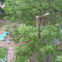 Владивосток — 1-комн. квартира, 16 м² – Улица Слуцкого, 16/2 (16 м²) — Фото 5