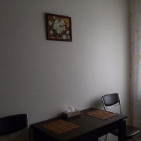 Владивосток — 1-комн. квартира, 33 м² – Гамарника, 23 (33 м²) — Фото 13