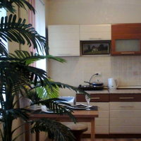 Владивосток — 1-комн. квартира, 28 м² – Алеутская, 41 (28 м²) — Фото 7