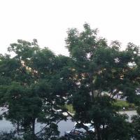 Владивосток — 2-комн. квартира, 45 м² – Леонова, 21 (45 м²) — Фото 5