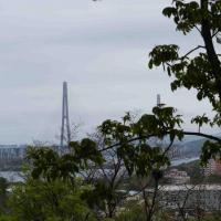 Владивосток — 1-комн. квартира, 34 м² – Полярная, 1/1 (34 м²) — Фото 4