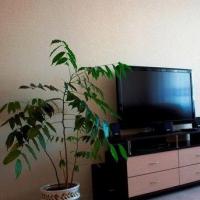 Псков — 1-комн. квартира, 36 м² – Профсоюзная, 3 (36 м²) — Фото 3