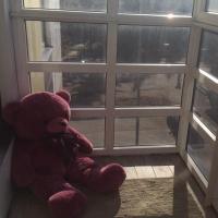 Псков — 2-комн. квартира, 40 м² – Ижорского Батальона (40 м²) — Фото 9