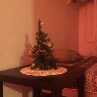 Псков — 1-комн. квартира, 30 м² – Воеводы Шуйского, 8А (30 м²) — Фото 8