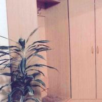 Псков — 1-комн. квартира, 30 м² – Инженерная, 108/62 (30 м²) — Фото 4