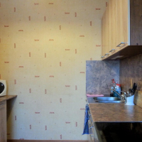 Петрозаводск — 1-комн. квартира, 43 м² – Ригачина, 44 (43 м²) — Фото 8