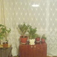 Калуга — 2-комн. квартира, 45 м² – Чижевского дом, 12 (45 м²) — Фото 4