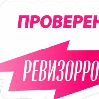 Рязань — 1-комн. квартира, 350 м² – Трубежная, 10 (350 м²) — Фото 2